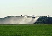 Фунгіцидна обробка полів вертольотами Кропивницкий