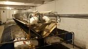 Отопление кролефермы. из г. Кременчуг