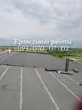 Капитальный ремонт кровли элеватора Полтава