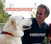 Зоопсихолог, кинолог - дрессировка собак, коррекция поведения. Выезд на дом Киев и обл. или Online из г. Киев