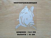 Наклейка на авто Карп Белая светоотражающая из г. Борисполь