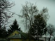 Дрова фруктовых деревьев и берёзы для печного отопления. Донецк