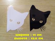 Наклейка на авто Кот на авто Белая, чёрная из г. Борисполь
