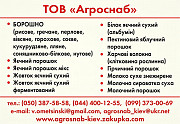 Коріандр мелений оптом из г. Киев