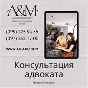Устные и письменные консультации адвоката из г. Харьков