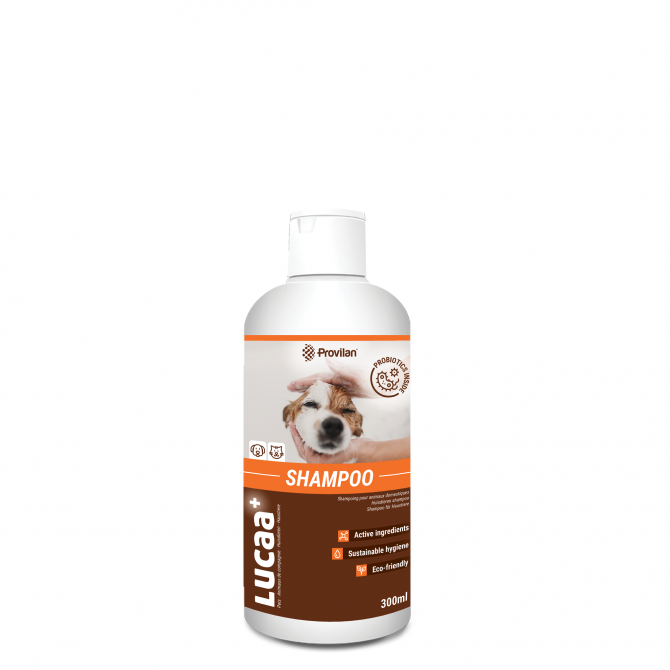 Шампунь пробиотик Provilan для ухода за мехом домашних животных Киев - изображение 1