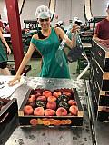 Продаем парагвайский персик Киев