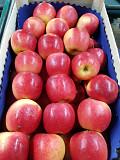 Продаем яблоки из г. Киев