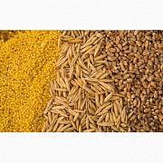 Куплю відходи кукурудзи, пшениці, сої, соняшнику, ячменю, проса Харьков