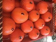 Продаем апельсины из Испании Киев