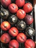 Продаем нектарин из Испании Киев