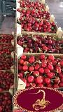 Продаем черешню из Испании Киев