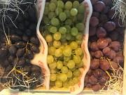 Продаем виноград из Испании Киев