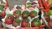 Продаем манго из Испании Киев