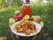 Сок яблочный домашний с горного сада Карпат. доставка из г.Киев
