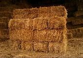 Доставка пшеничной Соломы в тюках по Запорожью.