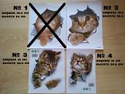 Наклейки котики для детской комнаты доставка из г.Борисполь